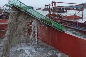 Mỏ cát ở vùng biển biên giới: Lộ nhiều sai phạm nghiêm trọng