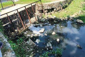 Nước thải bốc mùi thối tuồn ra hồ nước công viên ở Đà Nẵng