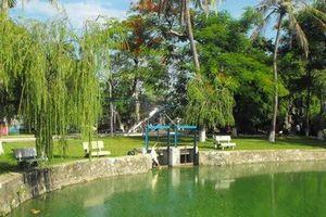 Công viên lớn nhất thành phố Đà Nẵng đang 'chết mòn' do ô nhiễm