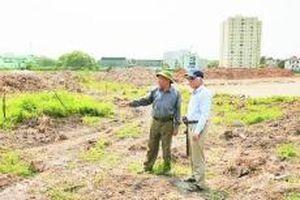 Hài hòa bảo tồn và phát triển tại di chỉ Vườn Chuối
