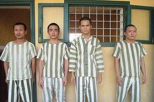 Đắk Nông: Bắt giữ nhóm thanh niên làm giả giấy tờ, thuê ô tô tự lái rồi mang đi cầm cố