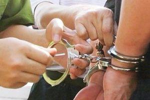 Nghệ An: Nhiều cán bộ Ban quản lý rừng phòng hộ bị bắt tạm giam