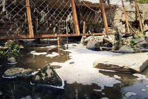 Đà Nẵng: Lòng hồ Công viên 29/3 bị xả nước thải đen ngòm