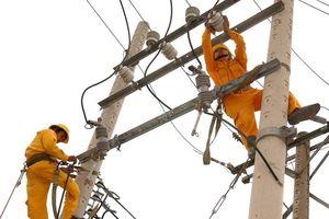 4 nhà thầu ngoại đấu thầu tư vấn thực hiện dự án lưới điện hiệu quả