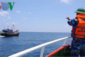 Ngăn chặn 22 tàu cá vi phạm an toàn đường ống dẫn khí dưới biển