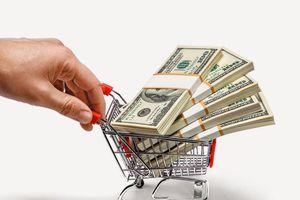 'Dịch vụ hỗ trợ tài chính' không phải là một ngành nghề kinh doanh