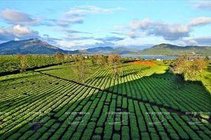 Gia Lai: Về miền hoang dã cùng văn hóa Tây Nguyên