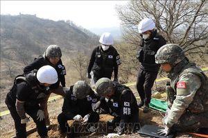 Mỹ - Hàn xác định danh tính hài cốt binh lính trong Chiến tranh Triều Tiên