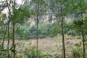 Chủ khai thác trái phép rừng đặc dụng chống đối lực lượng chức năng