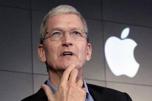 Cứ 2 tuần Apple lại mua 1 công ty mới