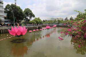Ngắm hoa sen 7 màu 'mọc' trên kênh Nhiêu Lộc mừng Phật đản