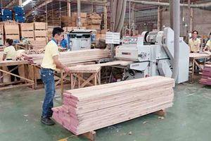 Hiệp định thực thi Luật lâm nghiệp, quản trị rừng và thương mại lâm sản Việt Nam- EU chính thức có hiệu lực