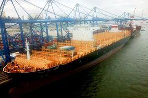 Hải Phòng lần đầu đón tàu trọng tải 132.000 tấn
