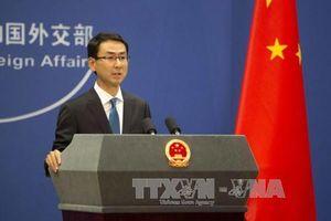 Trung Quốc - Nhật Bản ấn định thời điểm tham vấn cấp cao về các vấn đề trên biển