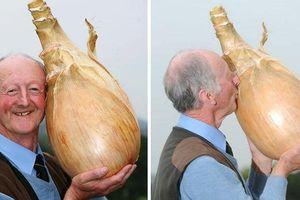 Tận mắt chiêm ngưỡng 15 loại rau củ khổng lồ ngoài sức tưởng tượng