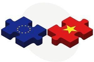 Tổng kết 8 năm EU đồng hành cùng y tế Việt Nam
