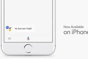 Cách kích hoạt trợ lý Google Assistant trên Iphone và Ipad
