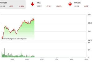 Phiên sáng 8/5: Lực cầu bắt đáy nhập cuộc, VN-Index hãm đà rơi