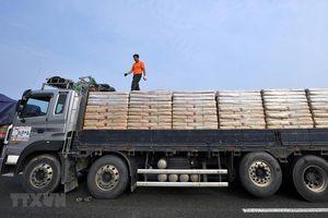 Hàn Quốc thúc đẩy viện trợ lương thực Triều Tiên