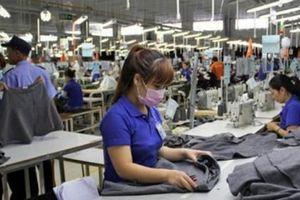 Hàng Việt chưa tăng được doanh thu tại thị trường Đông Âu tiềm năng
