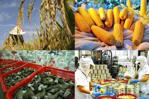 Xuất khẩu của khối doanh nghiệp trong nước tiếp tục là điểm sáng