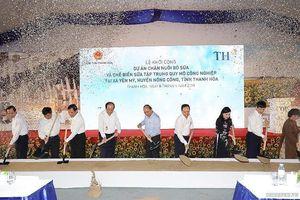 TH khởi công dự án chăn nuôi, chế biến sữa công nghệ cao trị giá 3.800 tỷ đồng tại Thanh Hóa