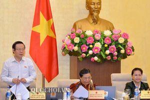 Phó chủ tịch Quốc hội: Nên bắt tài xế say xỉn nạo vét sông Tô Lịch