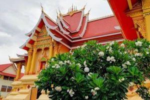 Cẩm nang du lịch Lào tự túc và tiết kiệm từ A tới Z
