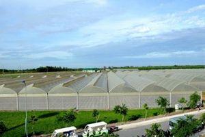 4 tháng, TP.HCM có 13.094 doanh nghiệp thành lập mới