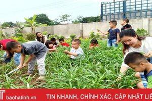 Tổng Giám đốc Vietnam Airlines hỗ trợ xây dựng vườn rau bán trú ở Hà Tĩnh