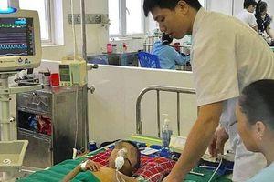 Bé 5 tuổi bị suy đa phủ tạng vì chữa sốt bằng thuốc thầy lang