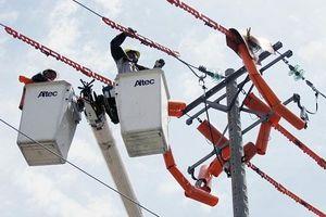 Tổng công ty Điện lực thành phố Hồ Chí Minh: Giải pháp cung cấp đủ điện