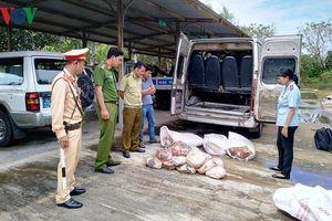 Bắt giữ xe khách vận chuyển 500 kg thịt bốc mùi hôi thối