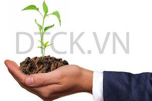 Top 10 cổ phiếu tăng/giảm mạnh nhất tuần: Nhà đầu tư tập trung giao dịch nhóm cổ phiếu nhỏ