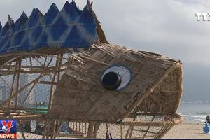 Cá bống khổng lồ 'ăn' rác nhựa trên bãi biển Đà Nẵng