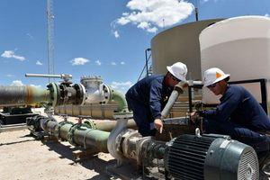 Giá dầu nhảy vọt sau khi tàu chở dầu của Ả Rập Saudi bị tấn công ở vùng Vịnh