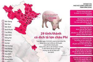 29 tỉnh, thành phố có dịch tả lợn châu Phi