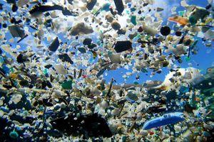 Khoảng 8 triệu tấn nhựa thải ra đại dương trên toàn cầu mỗi năm
