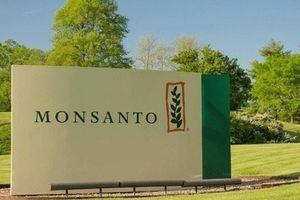 Sau scandal thuốc diệt cỏ, Monsanto lại vướng bê bối truyền thông