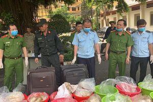TPHCM: Chiêu đối phó công an của 'ông trùm' đường dây vận chuyển 500kg ma túy