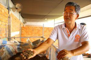 Đồng Tháp: Mắc mùng nuôi loài ruồi chết sớm, bán trứng giá 15 triệu/ký