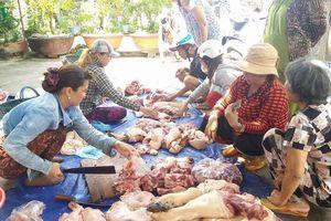 Giá thịt lợn hơi giảm khi dịch lợn tả châu Phi bùng phát trở lại