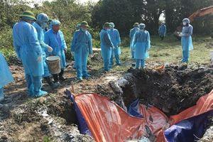 Cấp bổ sung 84.929 lít hóa chất phòng, chống bệnh Dịch tả lợn châu Phi