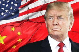 Vực dậy từ chiến tranh thương mại: Phản ứng đối mặt bão táp từ Trung Quốc?