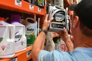 Monsanto phải bồi thường 2 tỷ USD cho cặp vợ chồng ung thư ở Mỹ