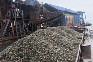 Bắt giữ 3 tàu khai thác cát, sỏi trái phép trên sông Đà