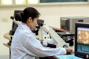 Phát triển các nhóm nghiên cứu trong trường đại học