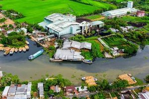 Một nhà máy đường ở Hậu Giang là 'thủ phạm' khiến nước đen, cá chết hàng loạt