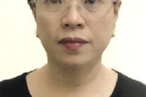 Khởi tố, bắt tạm giam Phó trưởng phòng khảo thí & Quản lý chất lượng, Sở GD&ĐT tỉnh Hòa Bình