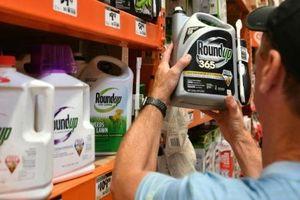Monsanto bị buộc bồi thường 2 tỉ USD vì thuốc diệt cỏ Roundup